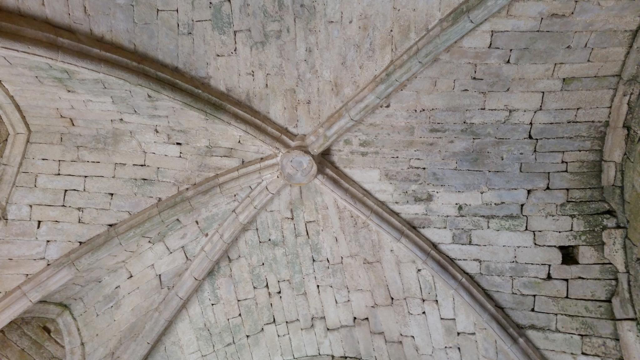 La vòuta de la tor gotica, emb l'escusson daus Beinac